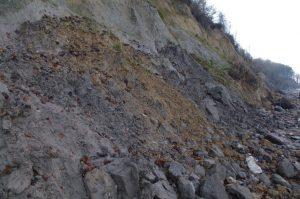 Abbruchkante der Ostsee-Steilküste bei Noer