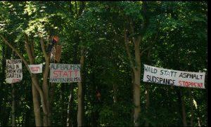 Baumbesetzung Vieburg - Quelle und Bildrechte: Südspange Stoppen!