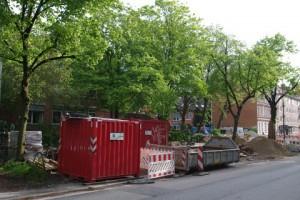 Baumschäden durch Baustelle Hasseldieksdammer Weg in Kiel