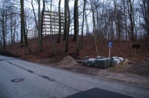 Tödlich für den Baum: Baustoffablagerung im Wurzelbereich von Rot-Buchen in Kiel-Düsternbrook