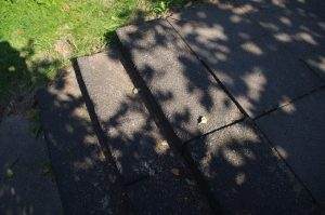 """Blockstufen und Gehwegplatten """"wandern"""" wegen fehlender Betonrückenstütze"""