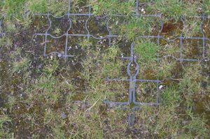 Bodenfestigung mit Plastik