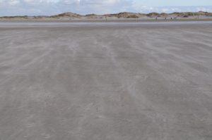 Durch Wind verdrifteter Sand überformt Dünen und Sandbänke beständig weiter