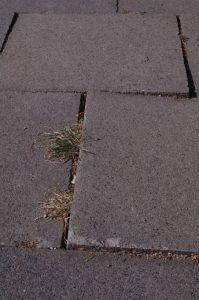 Gehwegplatten schieben sich wegen fehlender Rückstütze auseinander