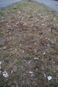Grünflächenmahd ohne Müllsammlung