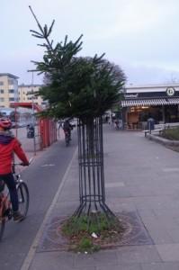 Grün kaputt. Gefunden in der Holtenauer Straße in Kiel.