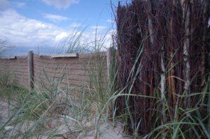 Küstenschutz mit Birkenfaschinen, Jute und Strandroggen