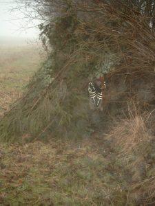 Kinderspiel im Winternebel: Höhlenbau mit Totholz an von Hasel dominierten Knick