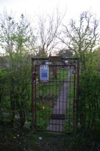 Parzelle 556 im Prüner Schlag - der letzt noch bewirtschaftete Garten in dem Gelände, das mehrere hundert Parzellen umfasste