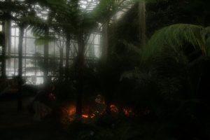 Regenwaldhaus in den Schaugewächshäusern Neuer Botanischer Garten Kiel - Foto: Rosa Thiemer (2011)