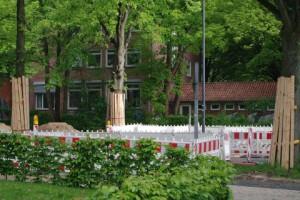Symbolischer Baumschutz