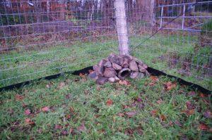 Tierdurchgang in Zaun und Wurzelsperre