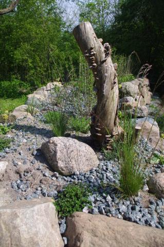 Trockenmauer kurz nach Erstbepflanzung