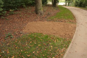 Kiel-Gaarden Park zum Brook - Rasenansaat auf Krautsaumvermindert Artenvielfalt