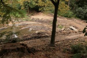 Kiel-Gaarden Park zum Brook: Teichanlage behindert Mäandrierung