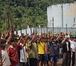 Regenwaldzerstörung stoppen!