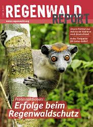 Regenwald Report 4-2011